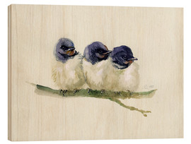 Wood print  3 little swallows - Verbrugge Watercolor
