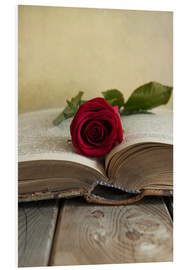 Foam board print  Red rose and old open book - Jaroslaw Blaminsky