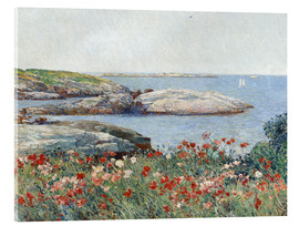 Acrylic print  Poppies, Isles of Shoals - Frederick Childe Hassam