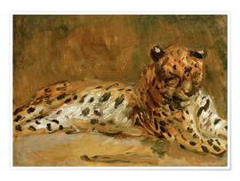 Premium poster Reclining African Leopard