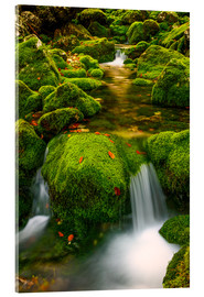 Acrylic print  In the green valley - Denis Feiner