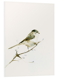 Foam board print  Long-tailed tit - Dearpumpernickel