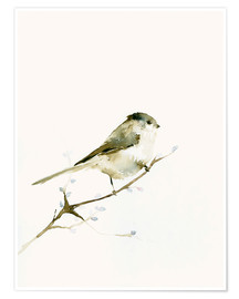 Premium poster Long-tailed tit