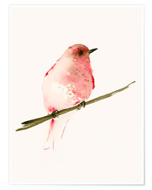 Poster  Rasberry red bird - Dearpumpernickel