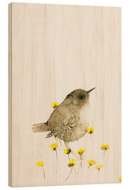 Wood print  Wren amongst yellow flowers - Dearpumpernickel