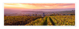 Premium poster Panoramic of autumn vineyards near Ville Dommange in Champagne, France