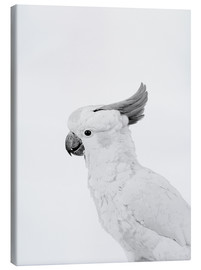 Canvas  Feathered rebel - Finlay and Noa