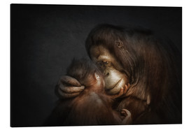 Aluminium print  Time for Tenderness Bond of love - Manuela Kulpa