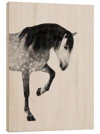 Wood print  From the high horse - Finlay and Noa