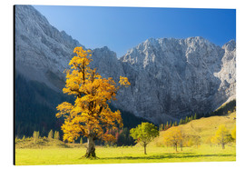 Aluminium print  Autumn in Alps - Dieter Meyrl