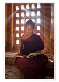 Premium poster  Young Burmese monk in meditation at the monastery - Jan Christopher Becke