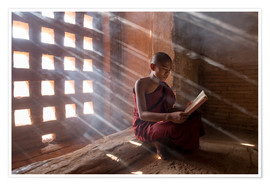 Premium poster Zen monk while reading a book