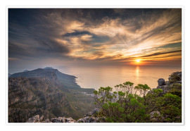 Premium poster  Table Mountain - Salvadori Chiara