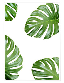 Premium poster  Attack of the Monstera - Finlay and Noa