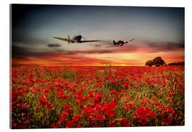 Acrylic print  Battle of Britain warriors - airpowerart