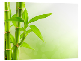 Acrylic glass  green bamboo