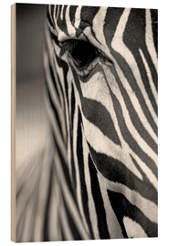 Wood print  Face of a zebra