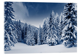 Acrylic glass  winter landscape with snow covered trees