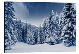 Aluminium print  Winter landscape with snow covered trees