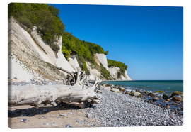Canvas print  Chalk cliffs on the island Ruegen (Germany) - Rico Ködder