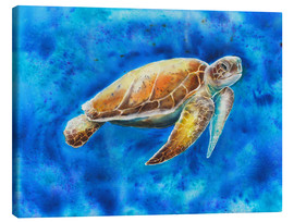 Canvas print  turtle - Jitka Krause