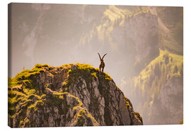 Canvas print  Capricorn in the Alps - Michael Helmer