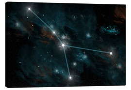 Canvas print  An artist's depiction of the constellation Cancer. - Marc Ward