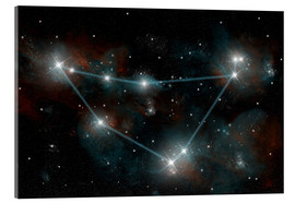 Acrylic print  Artist's depiction of the constellation Capricorn the Sea Goat. - Marc Ward