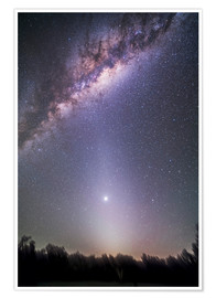 Premium poster Venus in zodiacal light.