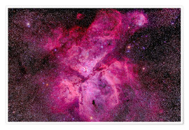 Premium poster The Carina Nebula in the southern sky