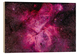 Wood  The Carina Nebula in the southern sky - Alan Dyer