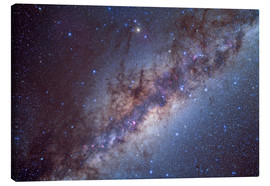 Canvas print  The center of the Milky Way through Sagittarius and Scorpius. - Alan Dyer