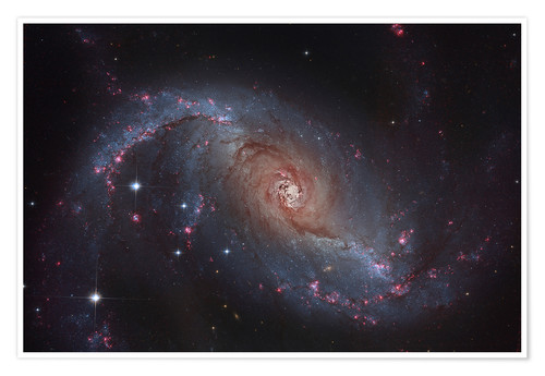 Premium poster Barred spiral galaxy NGC 1672 in the constellation Dorado.