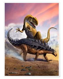 Premium poster Confronation between a Neovenator and a Polacanthus armored dinosaur.