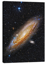 Canvas print  Messier 31, the Andromeda Galaxy. - Roberto Colombari