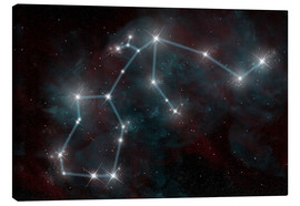 Canvas print  Artist's depiction of the constellation Aquarius the Water Bearer. - Marc Ward