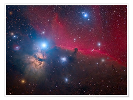 Premium poster The Horsehead Nebula and Flame Nebula