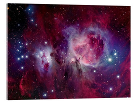 Acrylic glass  The Orion Nebula with reflection nebula NGC 1977 - Roberto Colombari