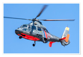 Premium poster  French Navy AS365 Dauphin helicopter - Timm Ziegenthaler