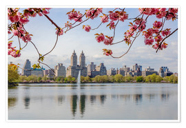 Premium poster  Buildings reflected in lake with cherry flowers in spring, Central Park, New York, USA - Matteo Colombo