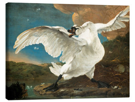 Canvas print  The threatened swan - Jan Asselijn