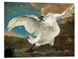 Foam board print  The threatened swan - Jan Asselijn