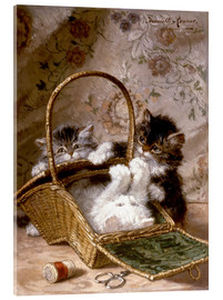 Acrylic print  Young cats with a sewing basket - Henriette Ronner-Knip