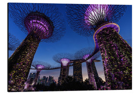 Aluminium print  Gardens by the Bay - Singapore - Thomas Klinder