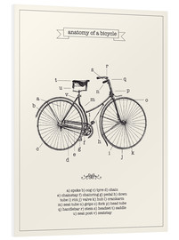 Foam board print  Vintage parts of a bicycle anatomy - Nory Glory Prints