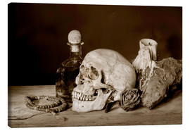 Still Life - skull, ancient book, dry rose and candle