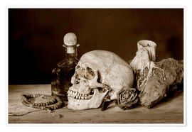 Premium poster  Still Life - skull, ancient book, dry rose and candle
