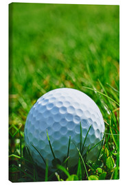 Canvas print  Golf ball in the grass