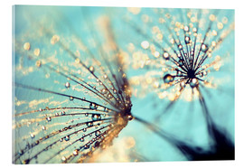 Acrylic glass  Dandelion gold - Julia Delgado