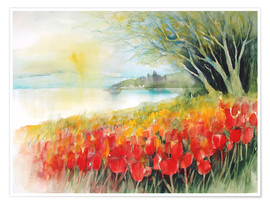 Premium poster  Tulips blossoms in Ueberlingen on Lake Constance - Eckard Funck